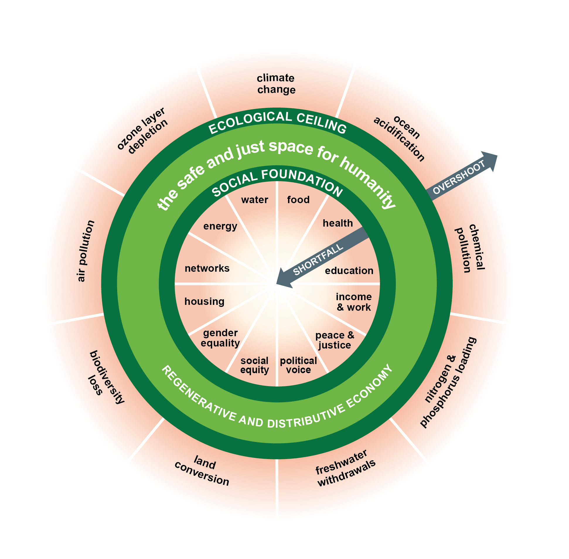 Kate Raworth doughnut model suggest a radical turn in economic theory, now tested in Amsterdam